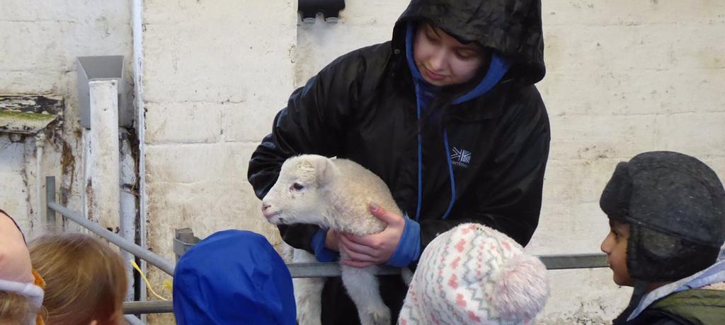 Nursery visit Meanwood Valley Urban Farm