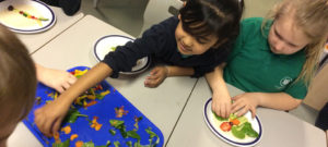 Hungry Caterpillar Workshop with Chartwells