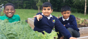 Year 4 have been working on the School Garden