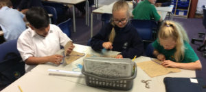 Viking tapestry with Year 5